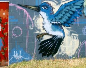 blue-hummer